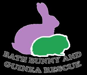Bath Bunny Rescue Logo