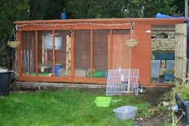 rabbit-shed-set-up